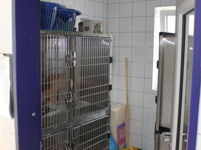 Quarantänebox für Kleintiere