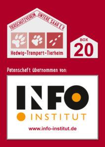 Info Institut